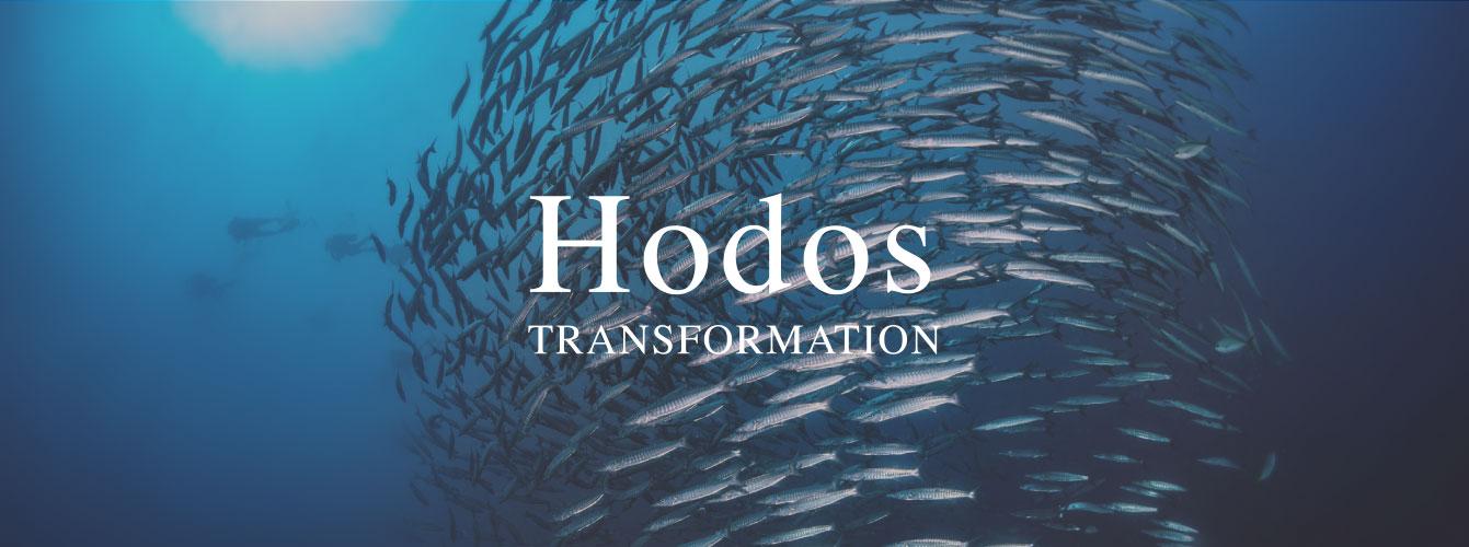 Hodos - Groupe Ferrein solution de développement de vos ressource humaines