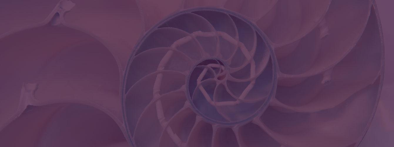 Image actualités - Groupe Ferrein solution de développement de vos ressource humaines